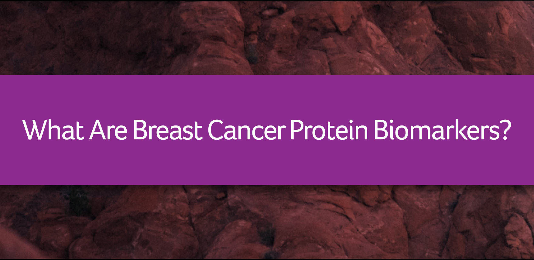 What are Breast Cancer Protein Biomarkers?.png