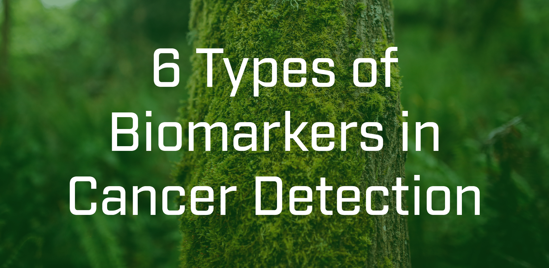 cancer gene detection Research on classification and detection of  colon cancer, gene  it provides a shortcut for the development of anti-cancer drugs tumor detection is.